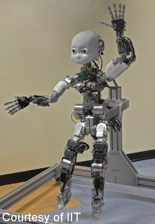 the event is endorsed by the ieee robotics and automation society and the italian robotics and automation association siri